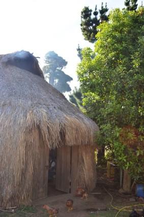 Escuela de Cine y Comunicación Mapuche ARB_004