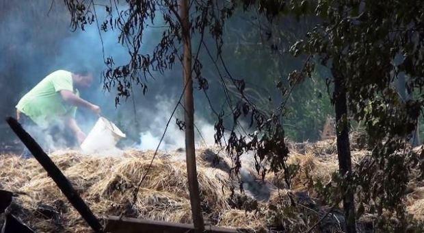 Captura Queman galpones de comunidad del Lof Mawidache (video)