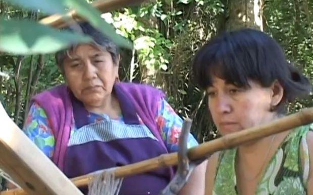 Captura KIMELTUWN MAPUCHE ÑIMIKAN - Documental (2011)
