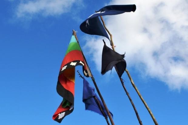 Comunidad Autónoma Temucuicui en Recuperación Territorial12