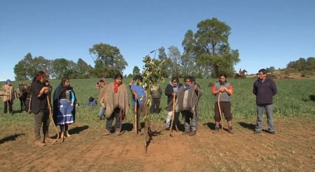 Captura Comunidades Mapuche convocan a movilización en Temuco
