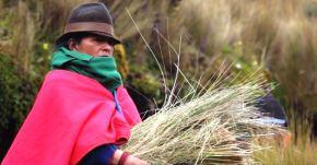 Captura PAWKAR PACHA - Trailer Documental - Pueblo Kichwa (2015)