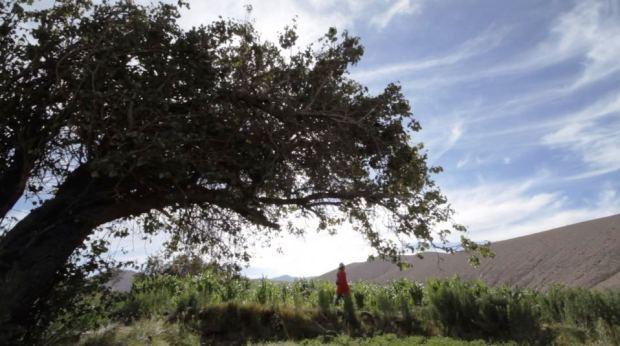 Captura SUNI, La Niña de Mis Ojos - Trailer Documental - Pueblo Aymara (2015)