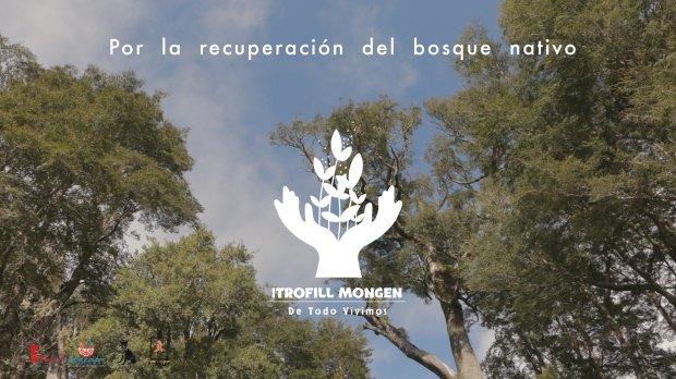 24-banner_De Todo Vivimos - Itrofill Mongen